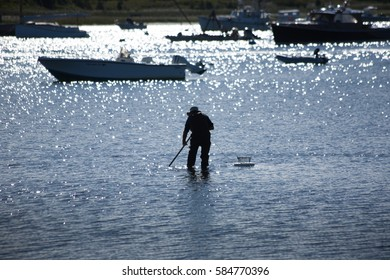 Cape Cod Fishing Images, Stock Photos & Vectors | Shutterstock