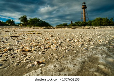 Shells on Sanibel Island with historic lighthouse and dramatic sky in background. Waves and sandy Florida coast. No people visible.