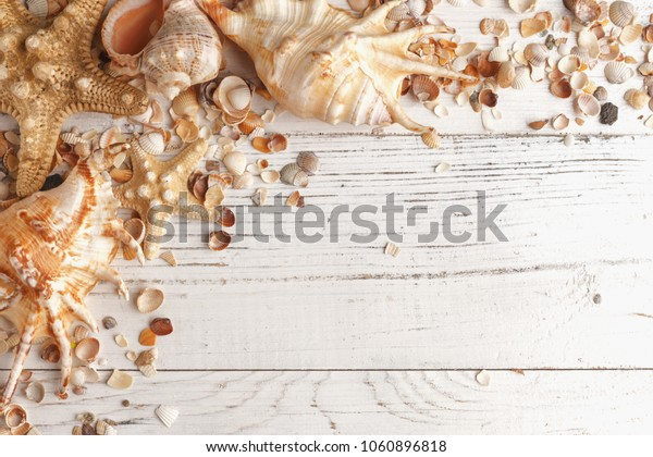 Shells on a wooden table. Layout for design.
