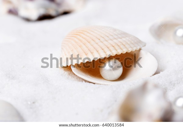 Shells and pearls in the sand