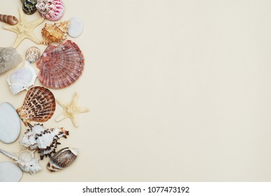 Shells and Stones Vacation Holliday Ivory Background with Copy space for Text. Top View.