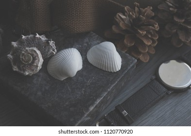 Shells tame everything around, creating the effect of comfort and freedom.
