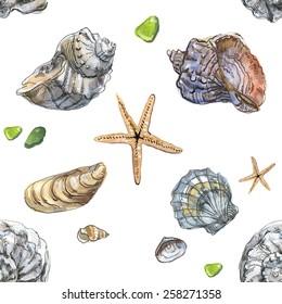 Shells. Watercolor. Pattern seamless.