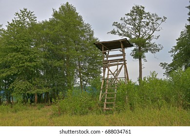 shelter with a ladder for hunting
