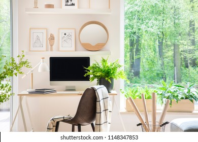Shelves with illustrations above a wooden desk with computer by a window in a natural, white home office interior for an artist