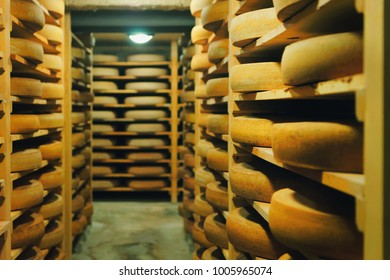 Shelves of maturing Cheese on wooden shelves in ripening cellar in France, Franche Comte dairy