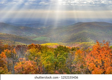 Shenandoah National Park in Autumn foliage - Virginia, United States of America