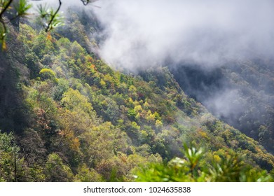 Shennongjia forest Tian Yan scenic early autumn
