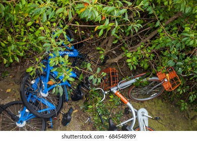 """Shenzhen, China –April 10, 2017: """"Mobike"""" and """"Bluegogo"""" bicycles were abandoned in the bushes in Shenzhen, China.The quality of the Chinese people needs to be improved"""
