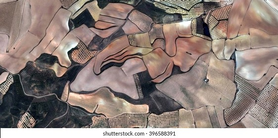 Shepherd dog,allegory, tribute to Picasso, abstract photography of the Spain fields from the air, aerial view, representation of human labor camps, abstract, cubism, abstract naturalism,