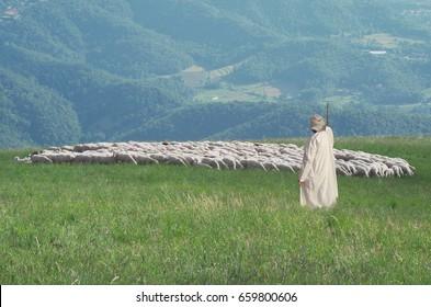 Shepherd and flock of sheep in the meadow. Symbolic scene of the Good Shepherd.