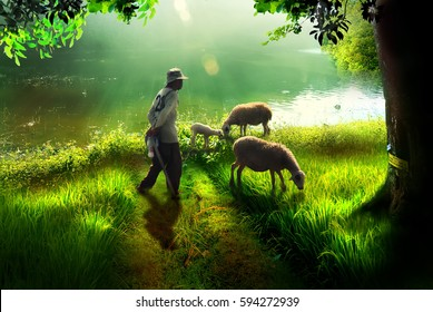 a shepherd with sheep on the edge of the lake near the forest and on the grass