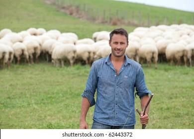Shepherd standing in green field with sheep