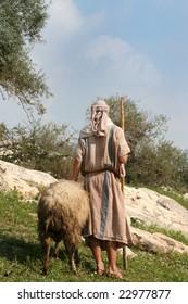 A shepherd in traditional dress leads a ram in Galilee, Israel