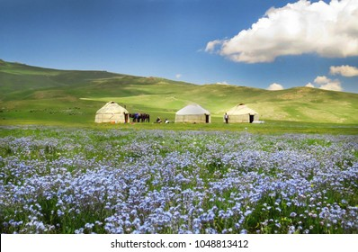 Shepherds tent Yurt with blue flowers, Kyrgyzstan mountain scenery