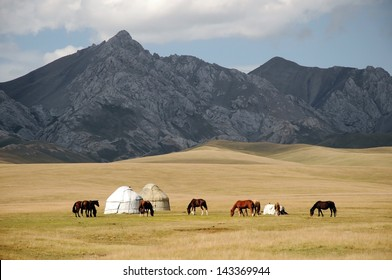 Shepherds tent Yurt with horses, Kyrgyzstan mountain scenery