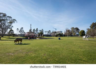Shepparton, Victoria, Australia - September 15, 2017: Monash Park with mooving cows and Chinese Gardens with large lake and red bridge. Excellent outdoors for society by weekend.
