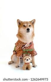 shiba inu kimono