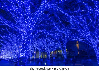 """Shibuya Blue Cave winter illumination festival, beautiful view, popular tourist attractions, travel destinations for holiday, famous romantic light up events in Tokyo, Japan. Translation : """"Blue Cave"""""""