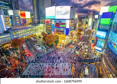 Shibuya Crossing  at twilight in Tokyo, Japan from above