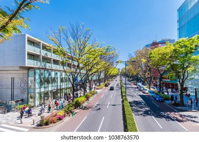 """SHIBUYA, TOKYO / JAPAN - APRIL 23 2017 : Scenery of """"Omotesando"""" lined up by high-end shops. Young leaves of street trees are budding. It is crowded with many tourists."""