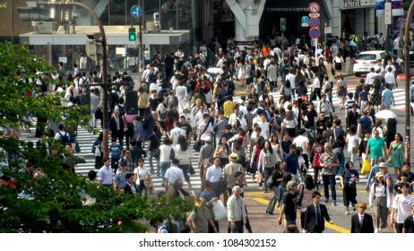 SHIBUYA,  TOKYO,  JAPAN - CIRCA MAY 2018 : Scenery of SHIBUYA big scramble crossing area from above in summer season.