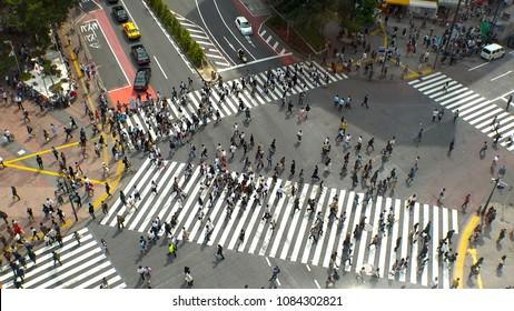 SHIBUYA,  TOKYO,  JAPAN - CIRCA MAY 2018 : Scenery of SHIBUYA big scramble crossing area from above in summer season.