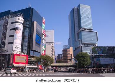 Shibuya,Japan November,6 2016 Shibuya is one of the downtown streets in Tokyo. Although it is downtown, there is also a big park, and on weekends it is a city where various people gather