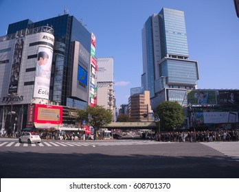 Shibuya,Japan November,6 2016?Shibuya is one of the downtown streets in Tokyo. Although it is downtown, there is also a big park, and on weekends it is a city where various people gather