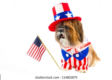 A Shih Tzu celebrates the Fourth of July in red, white and blue, including a top hat and flag.