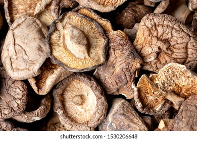 Shiitake mushrooms or lentinus edodes  foods that are healthy,  cultivated in Japan and China.