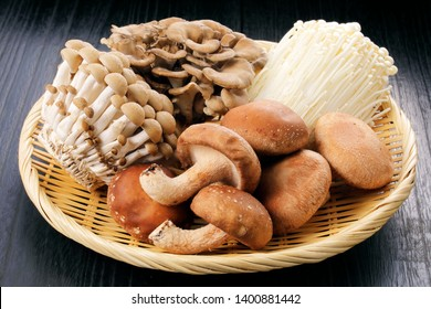 Shiitake, shijimi, maikake, shimeji, Set of Japanese mushrooms.