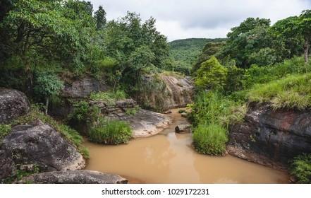 Shillong, Meghalaya, India. River flows through thick, layered forest deep in the Khasi hill on a monsoon morning near Shillong, Meghalaya, India.