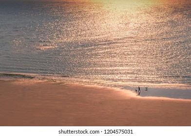 The shimmer of warm light from an evening autumn sunset as a woman walks two dogs on the beach in Ramsgate, Kent as seen from the cliff promenade