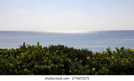The shimmering ocean seems more like a beautiful painting today, with sparkles, and shades of blue and green.