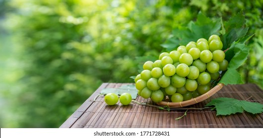 Shine Muscat Grape with leaves in blur background, Green grape in Bamboo basket on wooden table in garden