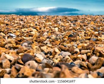 Shingle Beach, differential focus