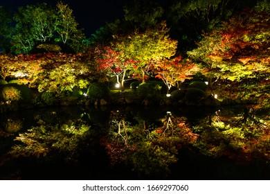 Tō-ji is a Shingon Buddhist temple in the Minami-ku ward of Kyoto, Japan.Beautiful autumn leaves.