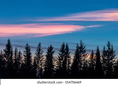 Shining clouds in evening sky