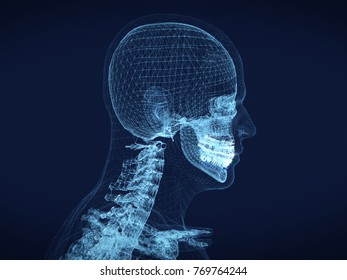 shining dots and line of skeleton ,body  human .3D rendering.