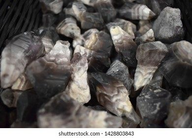 Fossil Product Images, Stock Photos & Vectors | Shutterstock