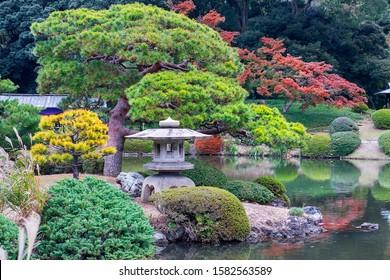 Shinjuku Gyoen National Garden, large park and garden in Shinjuku and Shibuya in Tokyo, Japan