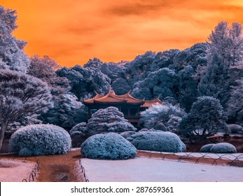 Shinjuku Park, Pagoda Tea-house, Tokyo, Japan. Taken with a specially modified camera that picks up and extended infrared range invisible to the eye.