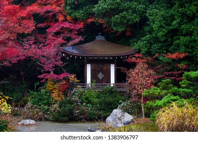 Shinto shrine in Bishamondo temple - one of the best spot to see red autumn foliage