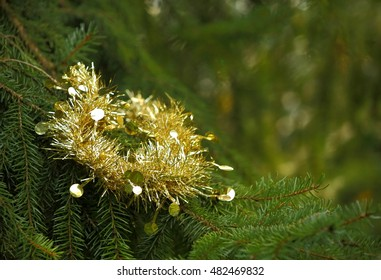 Shiny, golden Christmas tinsel on a tree, as concept symbol of Xmas,for background use.