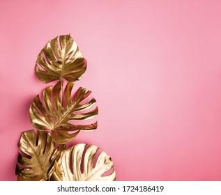 Shiny golden painted tropical monstera leaves bouquet on abstract pastel pink background isolated. Copy space. Fashionable glam floral arrangement.