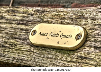 """Shiny metal sign with the words """"Amor vincit Omnia"""" (Love conquers all), attached to a rough wooden surface"""