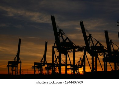 Ship to shore container cranes at sunset