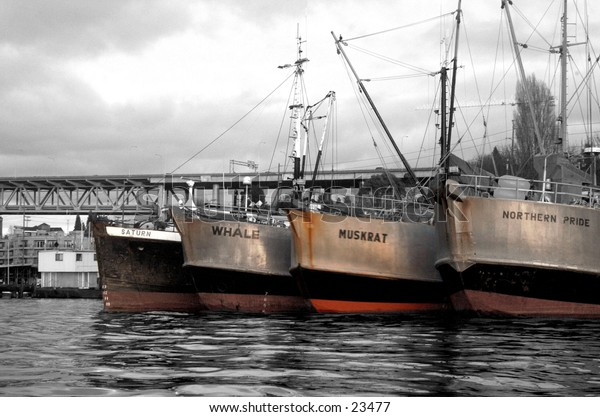 the ship yard