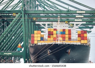 Ship-to-shore cranes unloading containers from a ship in harbor enviroment. Transportation industry and shipment logistics. Export and import bussines
